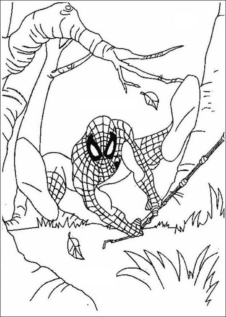 Coloring Spiderman Pages 10