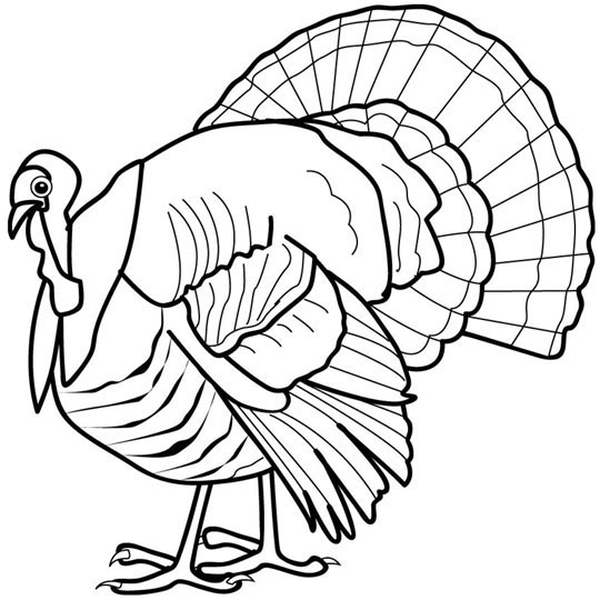 Turkey Coloring Page 9