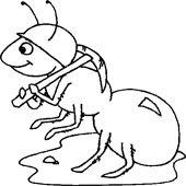 Ant Coloring 15