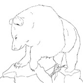 Bear Coloring Page 3