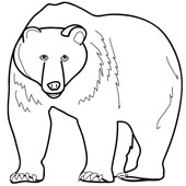 Bear Coloring Page 6
