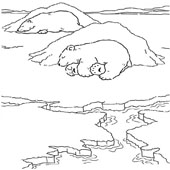 Bear Coloring Page 8