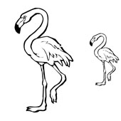 Flamingo Coloring 1
