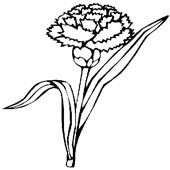 Flower Coloring Page 1