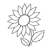 Flower Coloring Page 15